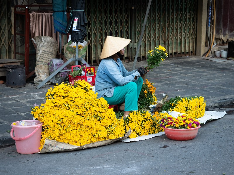 Woman Selling yellow chrysanthemums in Hoi An outdoor market.