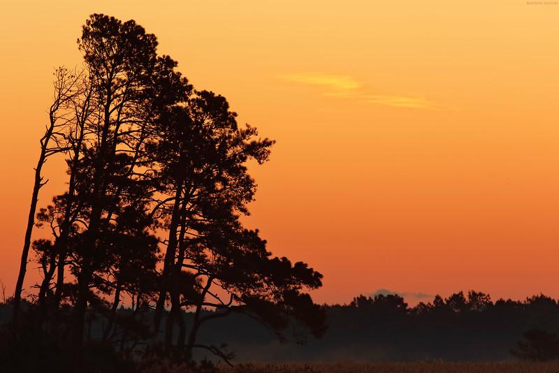 Sunrise at Chincoteague