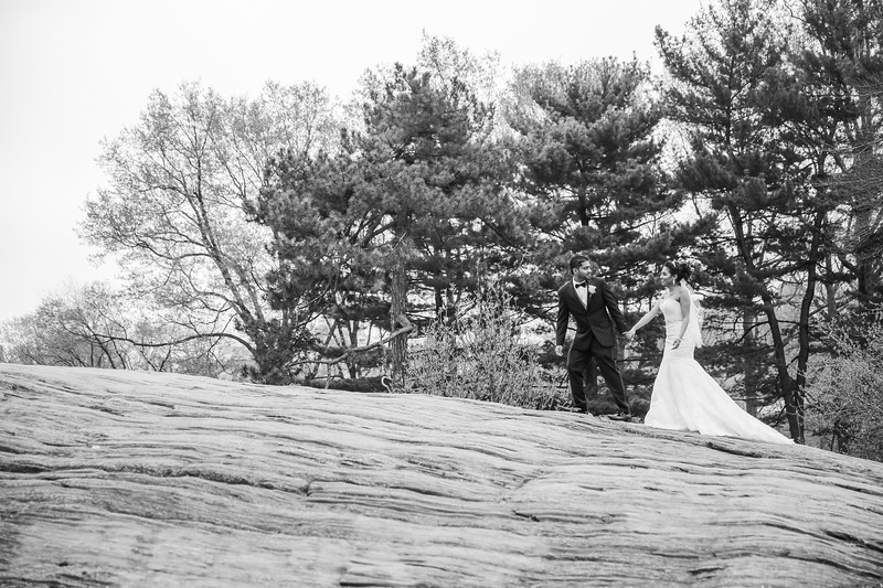Central Park Wedding - Maha & Kalam-103.jpg