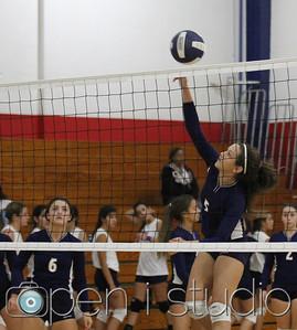 2013 JV Volleyball