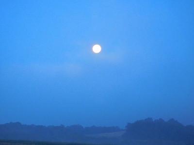 June Moon Set