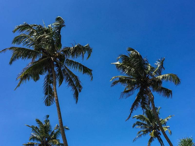 Sri_Lanka-iphone17-8527.jpg