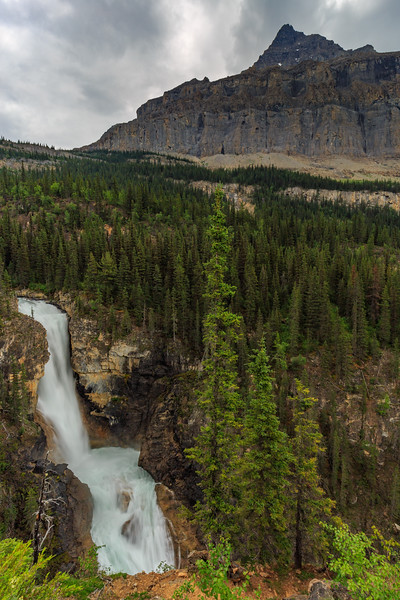 Falls Born Of Mount Robson