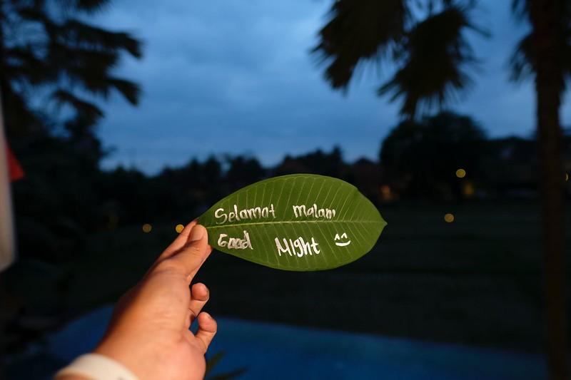 Trip of Wonders Day 10 @Bali 0157.JPG