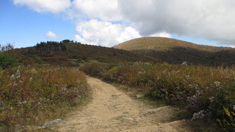 Art Loeb Trail -- 5,730'