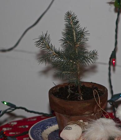 Christmas 12252013