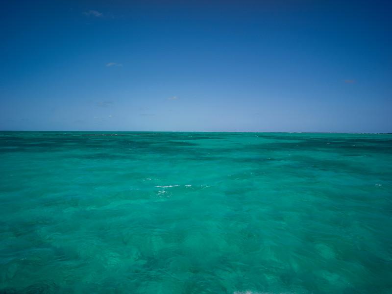Caribbean Sea, Half Moon Caye, Lighthouse Reef Atoll, Belize