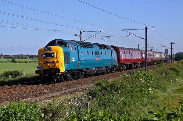 The Capital Deltic