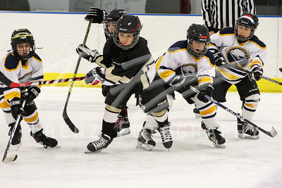 Gm 057 Sun 1030am NHL1 Squirt Penguins vs White Sabres