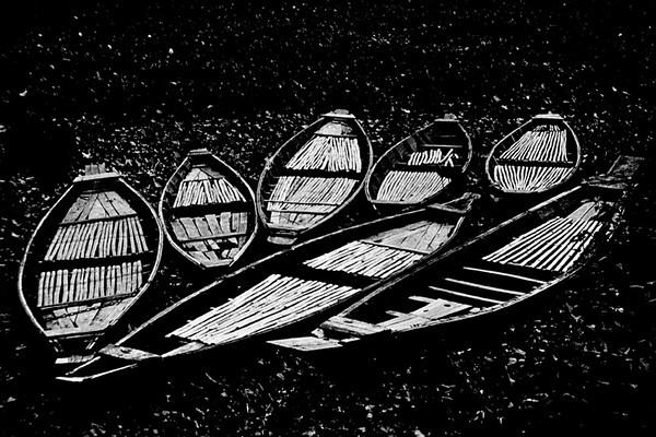 Abandoned Boats.jpg