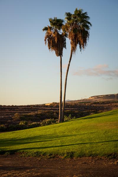 Golf Adeje_20191013_4360.jpg