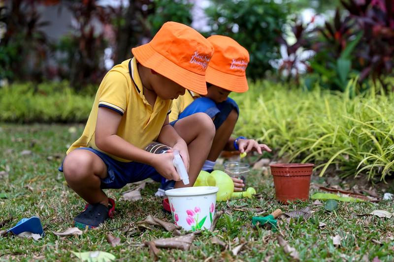 SSBD Gardening-0001.jpg