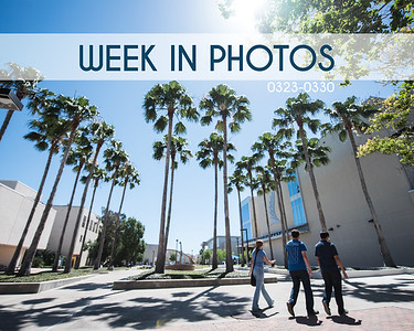 Week In Photos 0324-0331