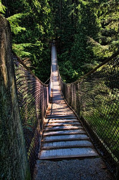 Lynn Canyon suspension bridge.