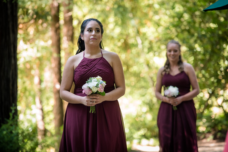 Neelam_and_Matt_Nestldown_Wedding-1295.jpg