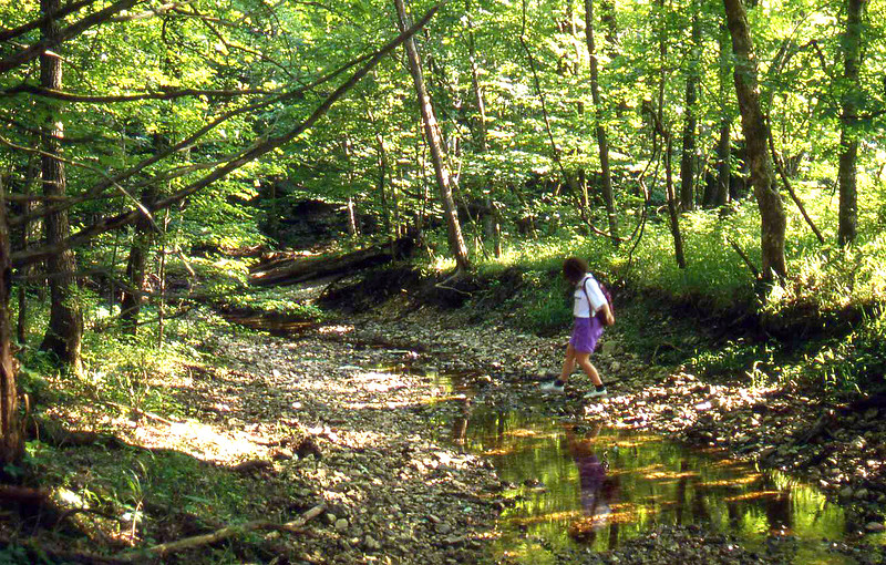 woman crossing a small stream in the forest