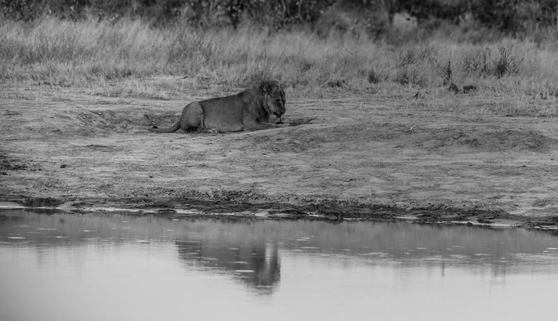 Botswana_June_2017 (4481 of 6179).jpg