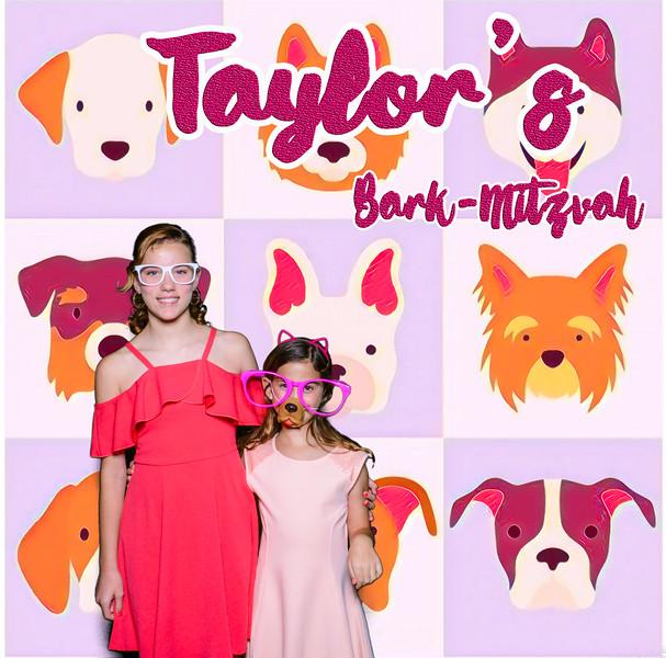 Taylors pawmitzvah-20758.jpg