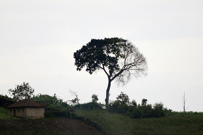 070115 4551-B Burundi - on the road to Rutana _E _L ~E ~L.JPG