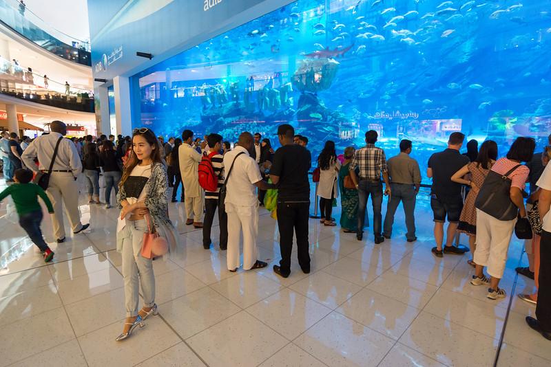 Aquarium in Dubai, March 2015