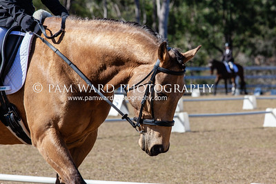 Cooloola Dressage 2nd Sept 2018