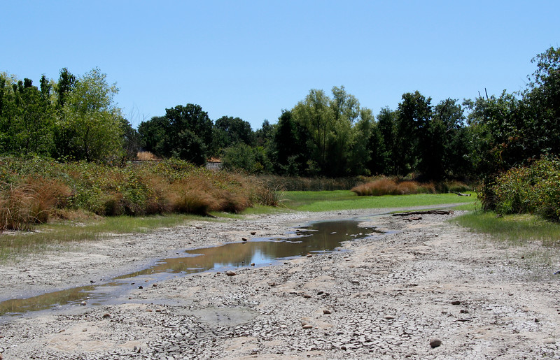 laguna drought.jpg