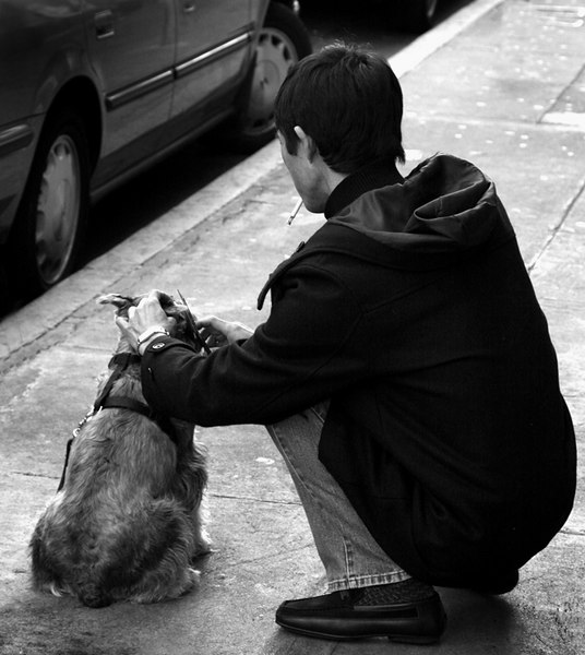 boy and his dogsmall.jpg