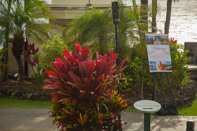 Maui-Caterina-CAM1-1st-120.jpg