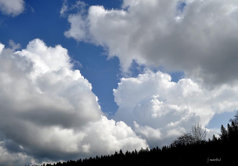 tall sky 2-28-2012.jpg