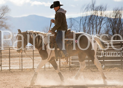 Jack Wright Roping Horses - 2016