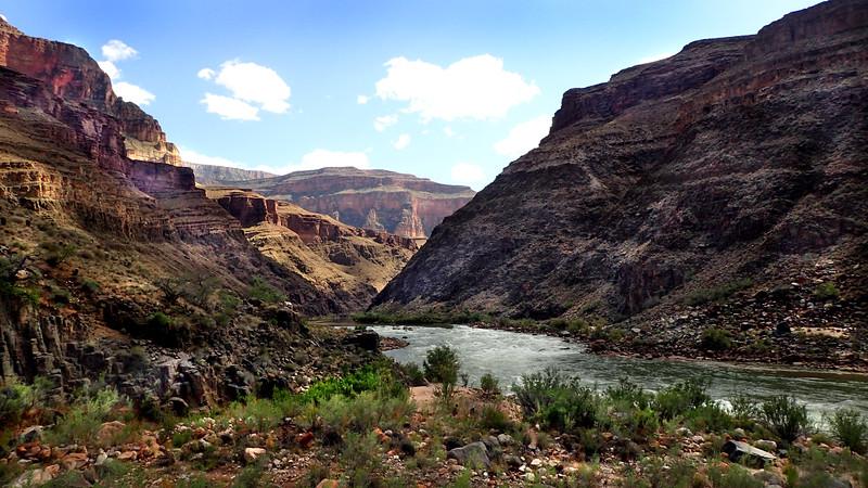 P5091288 river scene.jpg