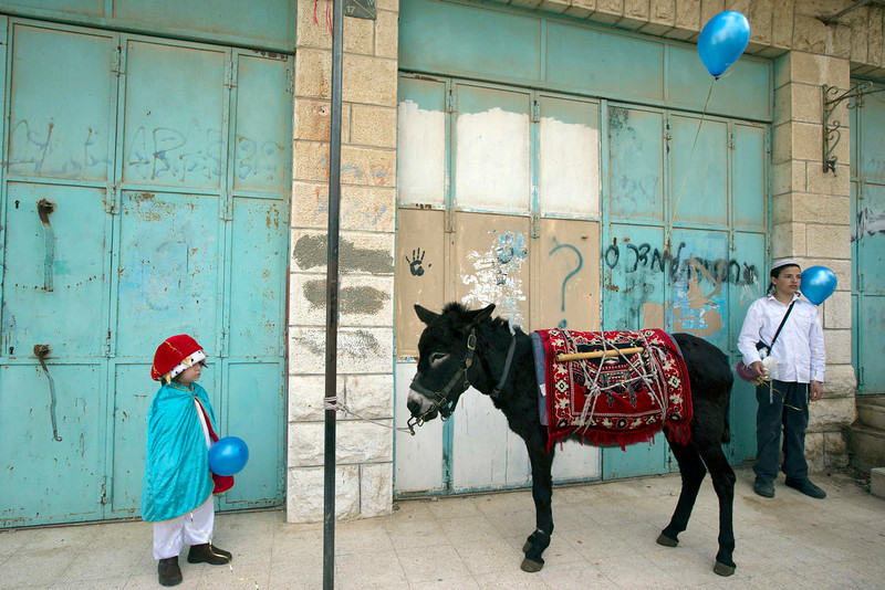 . A young Jewish settler (L), dressed in a costume, stands near a donkey during a parade for the holiday of Purim in the West Bank city of Hebron February 24, 2013. Purim is a celebration of the Jews\' salvation from genocide in ancient Persia, as recounted in the Book of Esther. REUTERS/Ronen Zvulun
