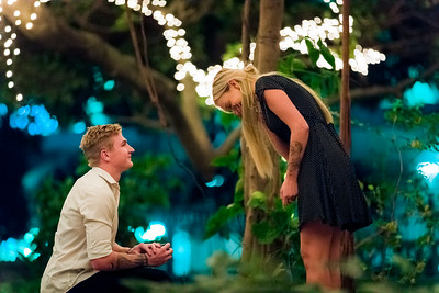 Josh Surprise Proposal