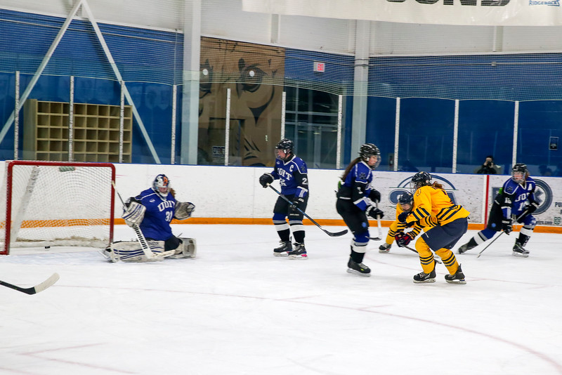 20150129 QWHockeyatUOIT 1162.JPG