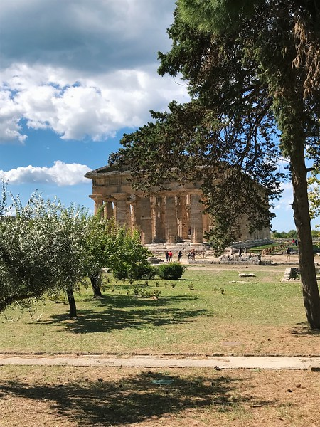 Explore ancient Greek temples in Paestum, considered one of the best day trips from Salerno, Italy. #boomertravel #salerno #italytravel