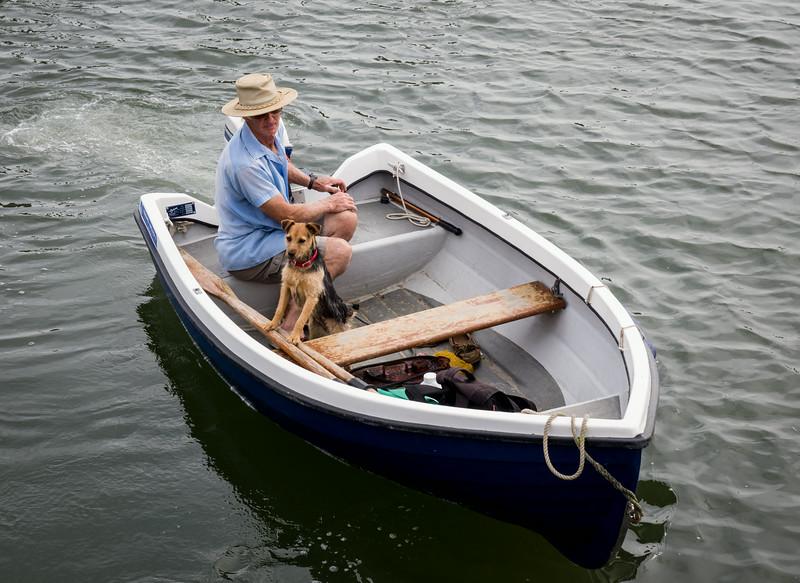 Bosham Harbour - One Man and his Dog