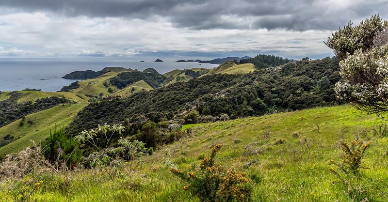 Blick zurück auf die Matauri Bay