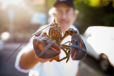 Lobster Feed 2016