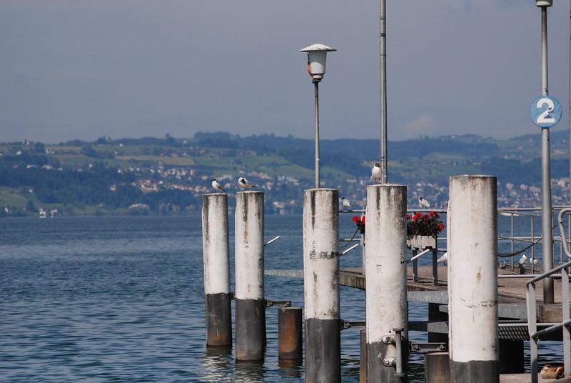Lake Zurich_2497549514_o.jpg