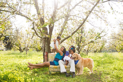 Thagaswamy Family Spring 2016 Mini-Session