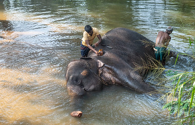2018 - Sri Lanka