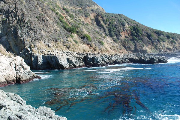 Big Sur Adventures