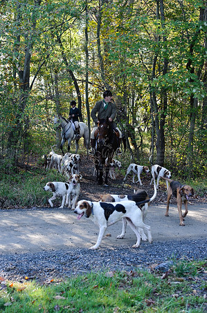 Snickersville Hounds 10-10-2010