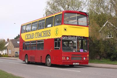 Cedar Coaches