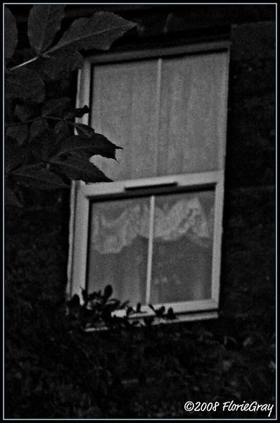 Evening Shade  ©2008 FlorieGray