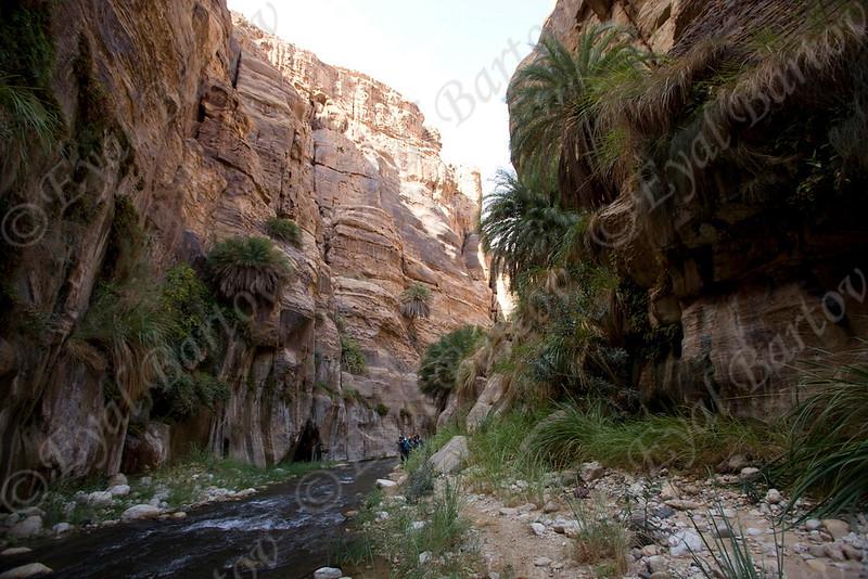 IMG_1014 Zered wadi- Jordan.jpg