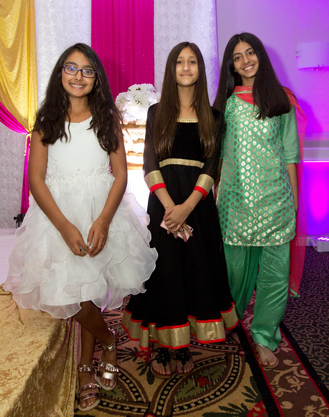 2018 06 Devna and Raman Wedding Reception 062.JPG
