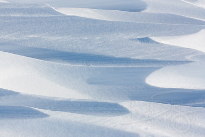 Snow Dunes. Snow Hill Island, Antarctica