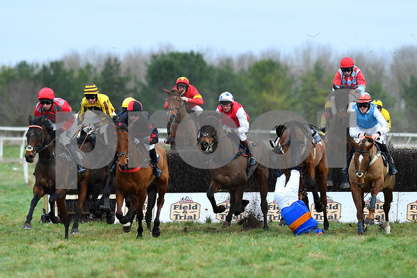 Larkhill Point to Point 06012019