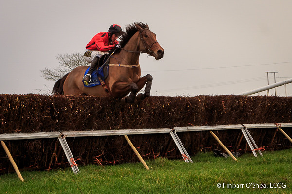 Lisgoold Point to Point - 04/01/15